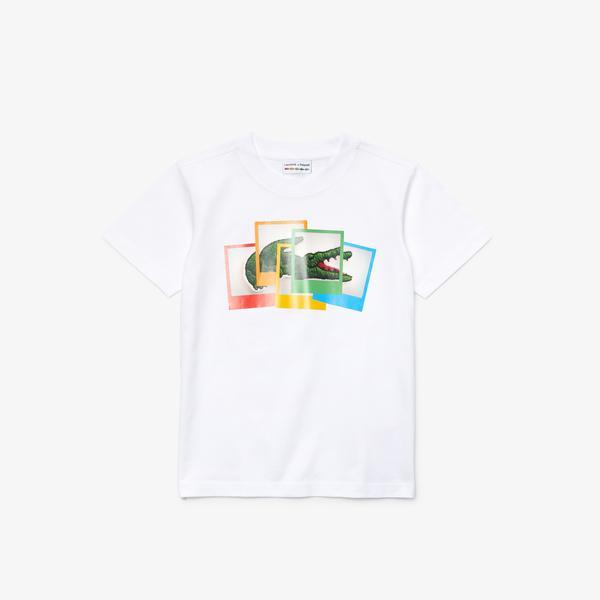 Lacoste Boys' T-Shirt